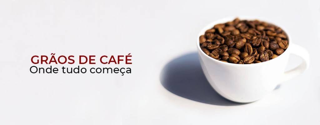 Diferença entre grãos de café especial, gourmet e tradicional